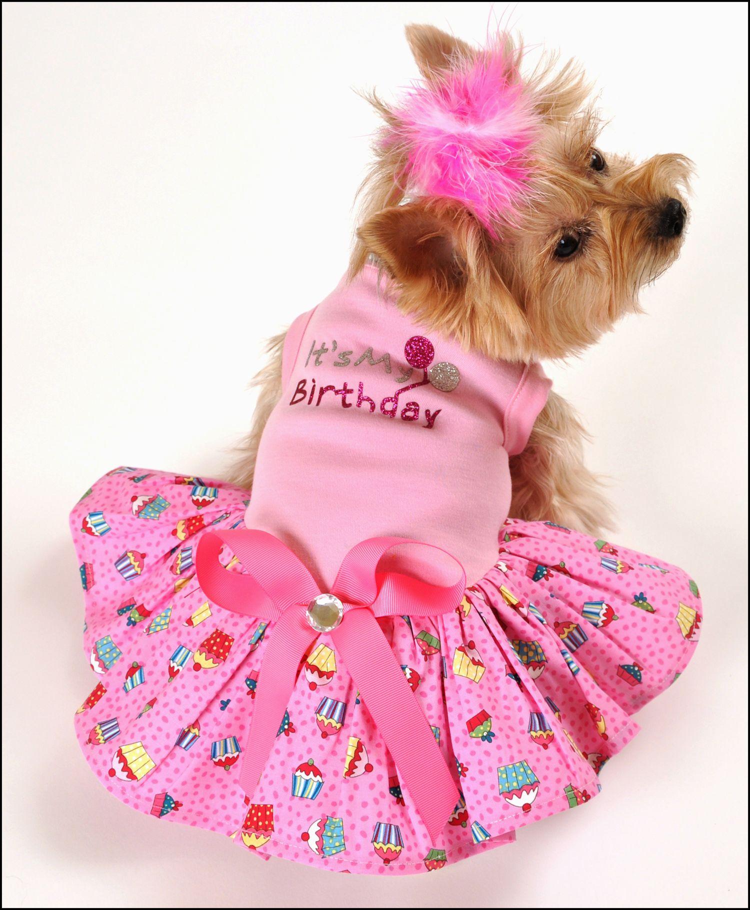 Dog Birthday Dress photo - 1