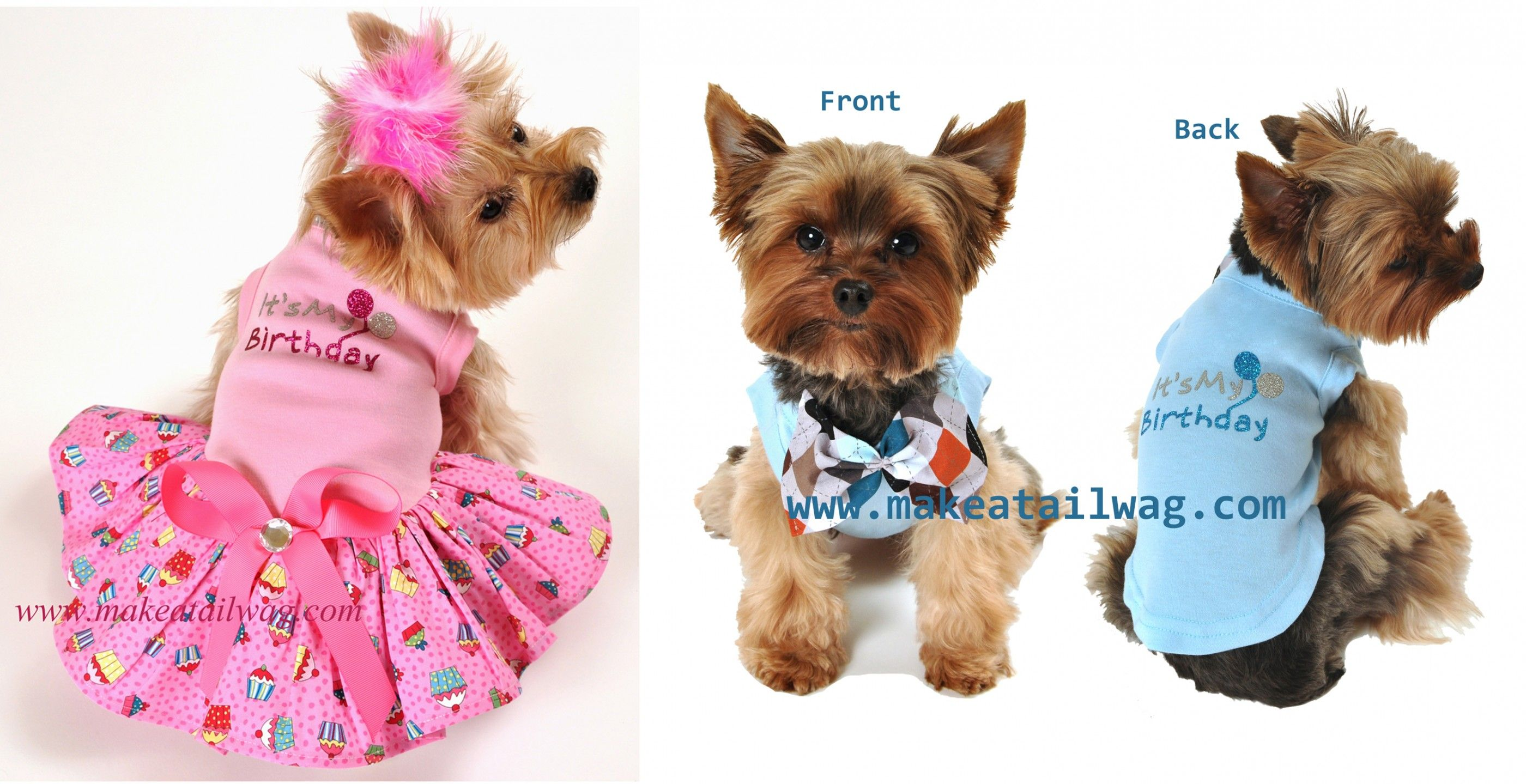 Dog Birthday Outfits photo - 1