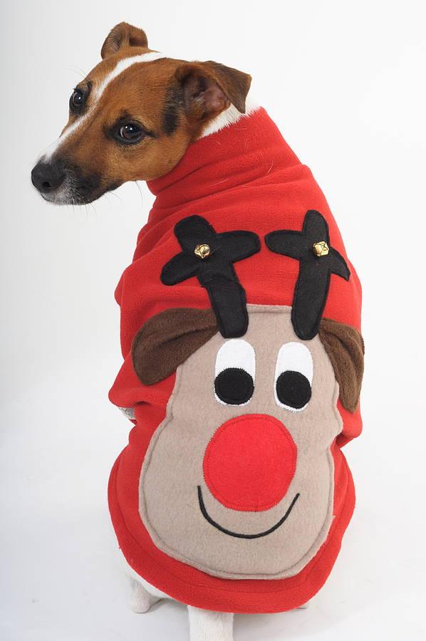 Dog Christmas Jumper photo - 1