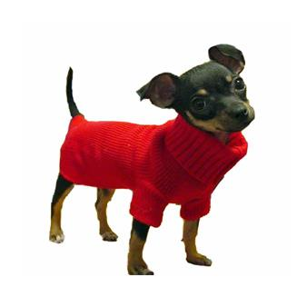 Dog Clothes Chihuahua photo - 1
