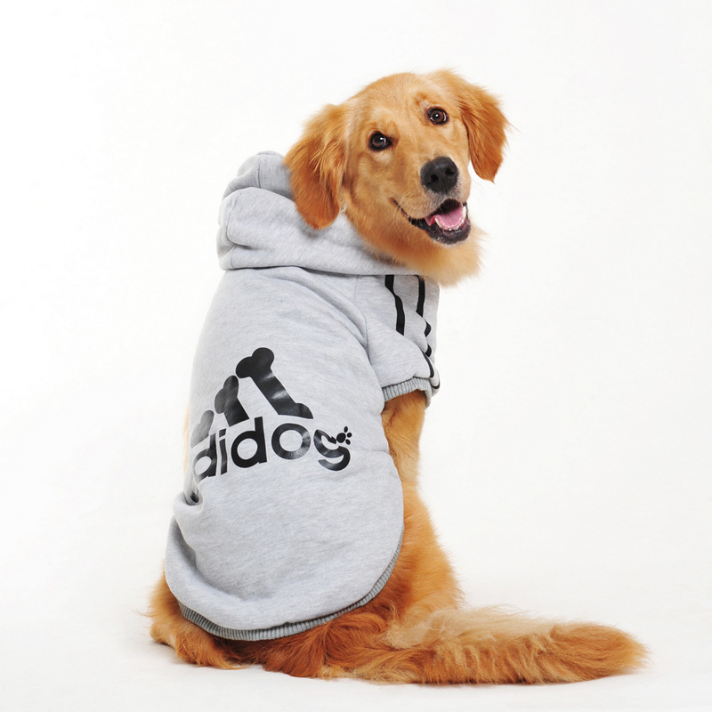 Dog Clothes For Labradors photo - 1