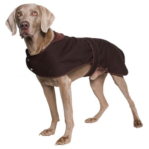 Dog Coat photo - 1