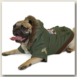 Dog Coats For Big Dogs photo - 1