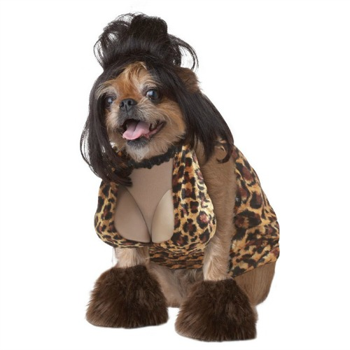 Dog Costumes For Big Dogs photo - 1