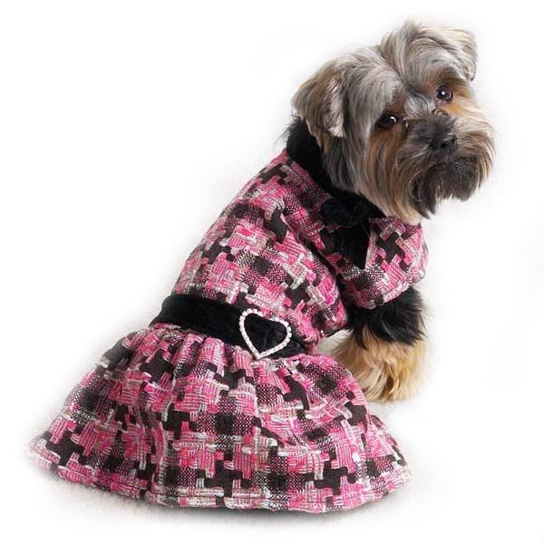 Dog Designer Clothes photo - 1