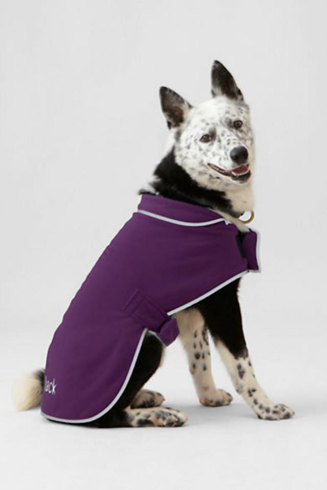 Dog Fleece Jacket photo - 3