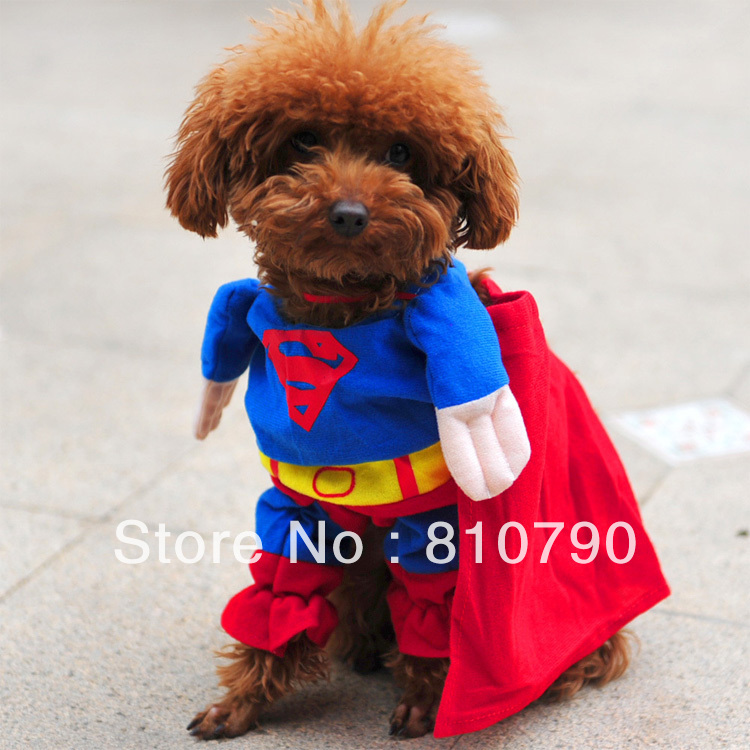 Dog Halloween Clothes photo - 2