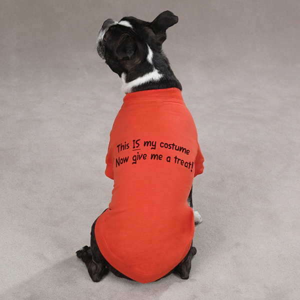 Dog Halloween Shirts ▻ Dress The Dog , clothes for your pets!