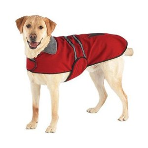 Dog Jacket photo - 1