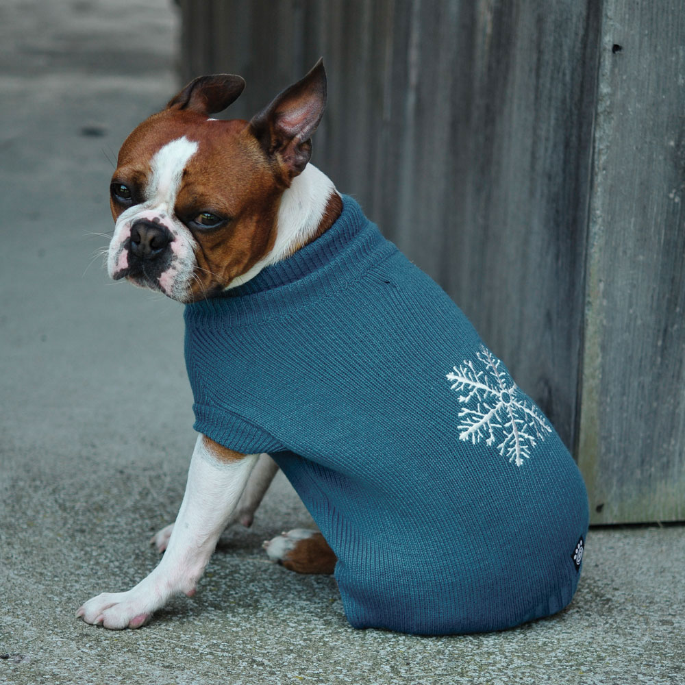 Dog Jackets And Sweaters photo - 1