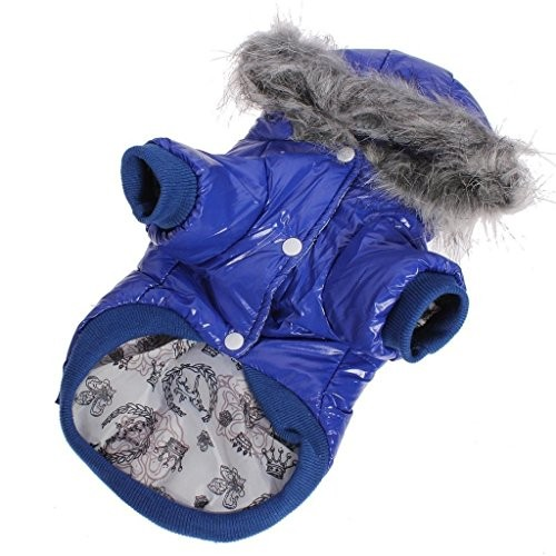 Dog Outerwear photo - 1