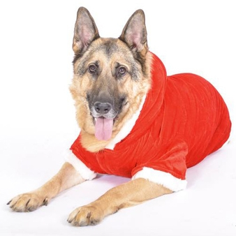 Dog Outfits For Large Dogs photo - 1