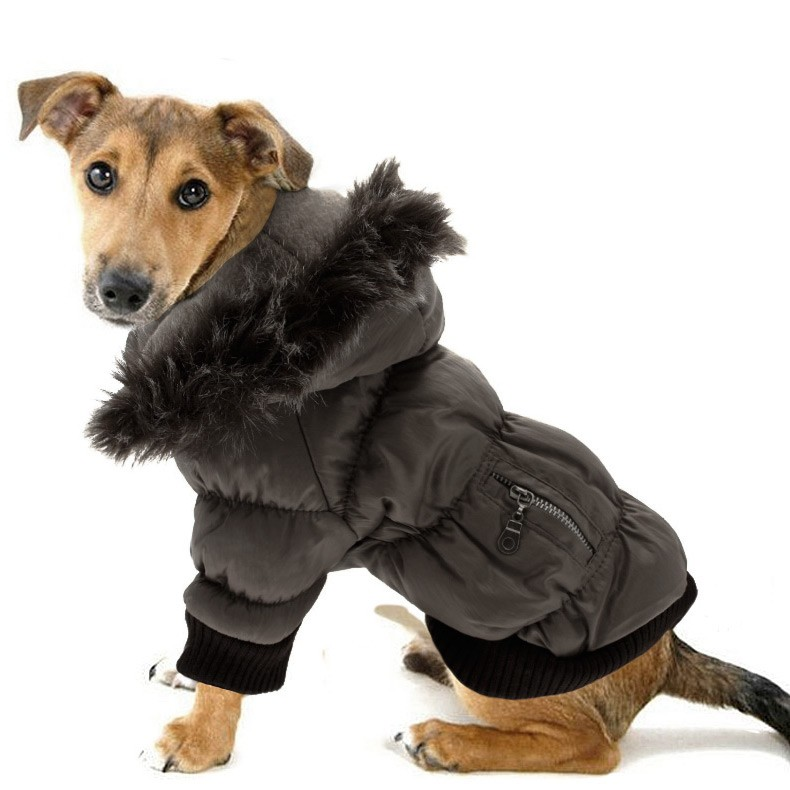 Dog Parka photo - 1