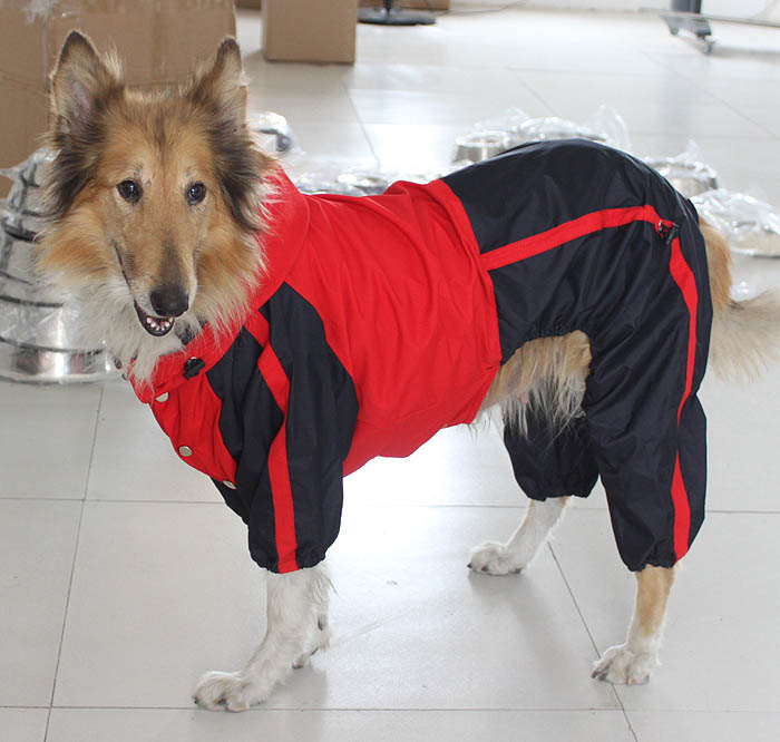 Dog Rain Suit photo - 2