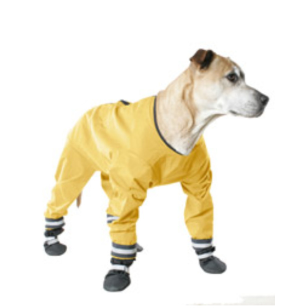 Dog Rain Suit photo - 3