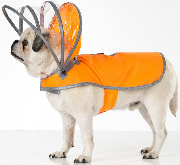 Dog Raincoat photo - 3