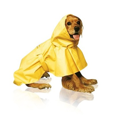 Dog Raincoat And Boots photo - 1