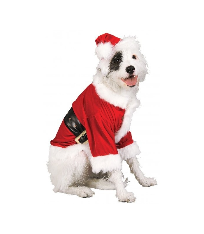 Dog Santa Costume photo - 1