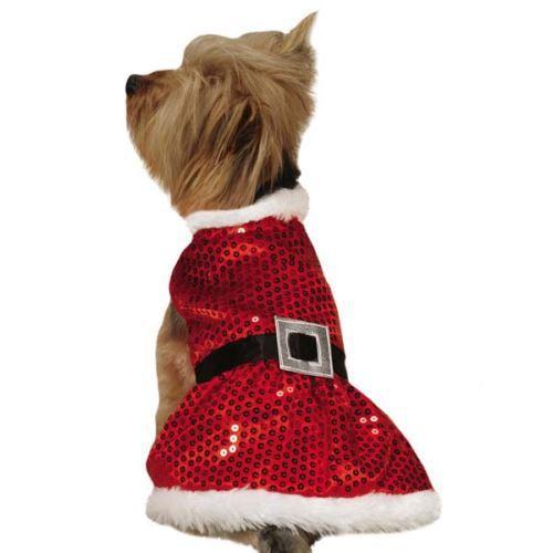 Dog Santa Dress photo - 1