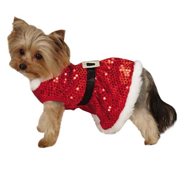 Dog Santa Dress photo - 2