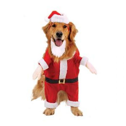Dog Santa Outfits photo - 1 - Dog Santa Outfits Dress The Dog - Clothes For Your Pets!