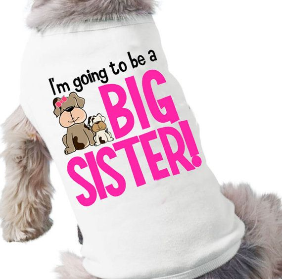 Dog Shirt Big Sister photo - 1