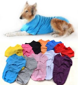Dog Shirts For Large Dogs photo - 2