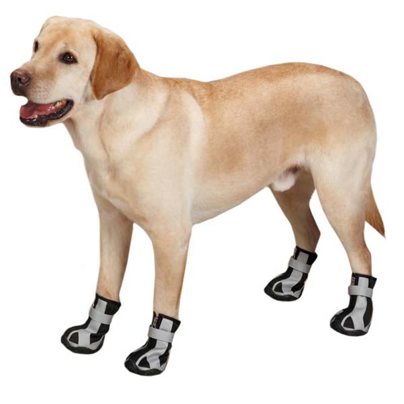 Dog Shoes photo - 3