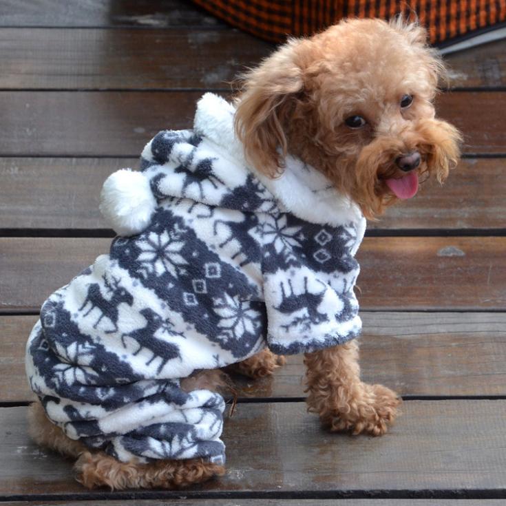 Dog Snow Clothes photo - 1