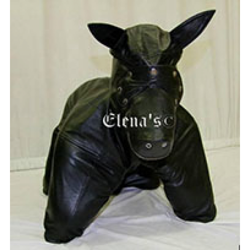 Dog Suits photo - 3