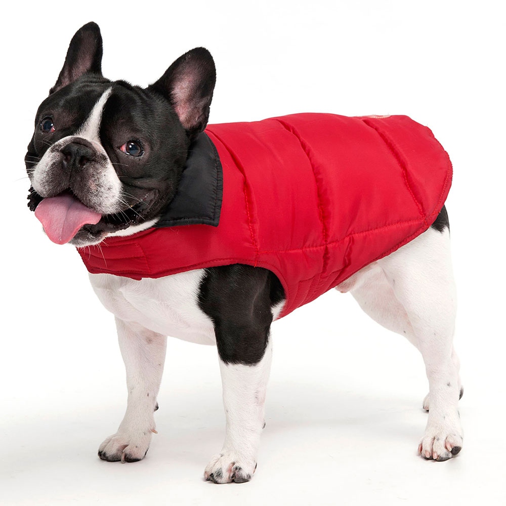 Dog Sweaters Coats photo - 3