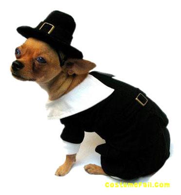 Dog Thanksgiving Costume photo - 1