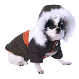 Dog Winter Clothes photo - 1