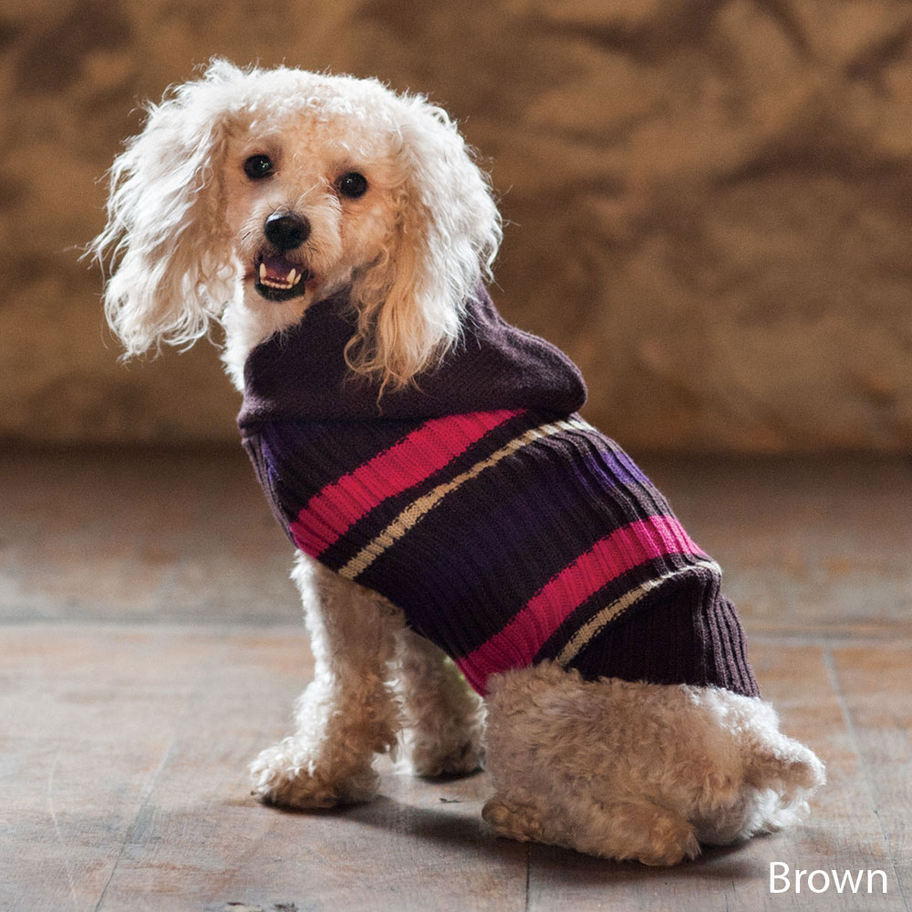 Doggie Coats And Sweaters photo - 3