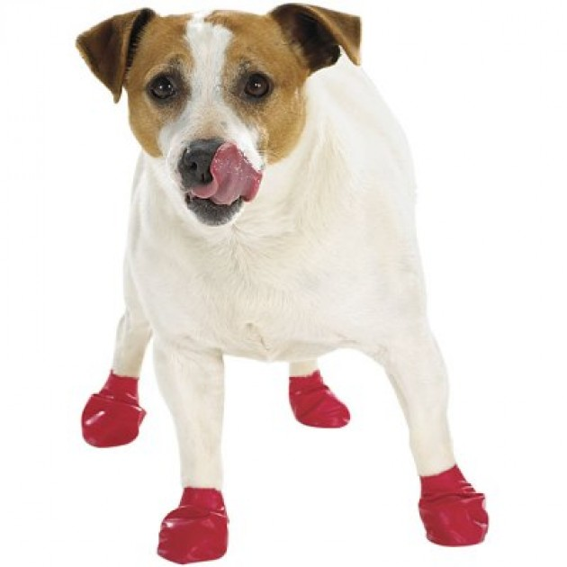Doggie Rain Boots photo - 1