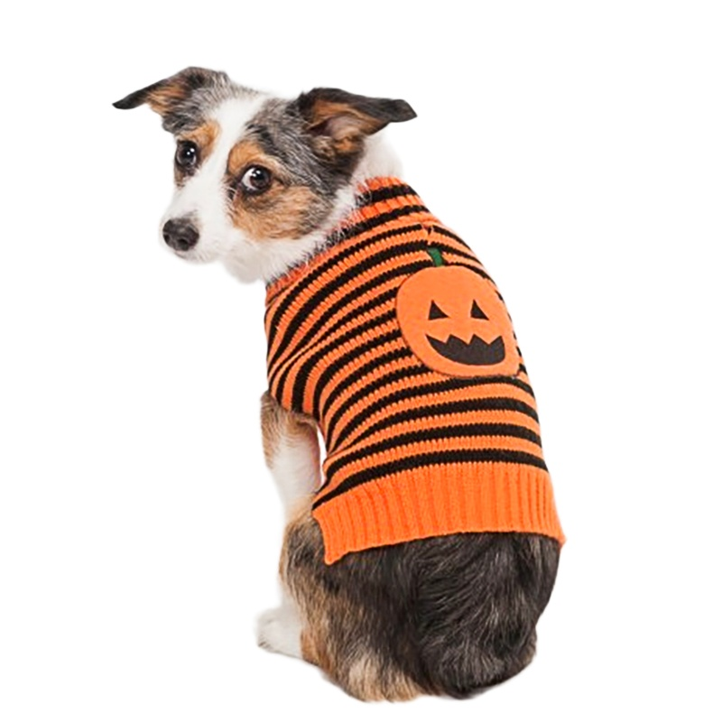Doggy Sweater photo - 2