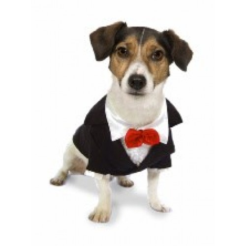 Doggy Tuxedo Dress The Dog Clothes For Your Pets