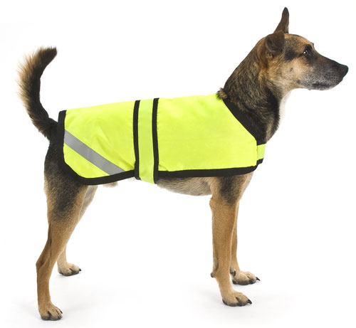 Dogs Jackets photo - 3