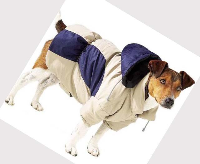 Dogs Winter Jackets photo - 3