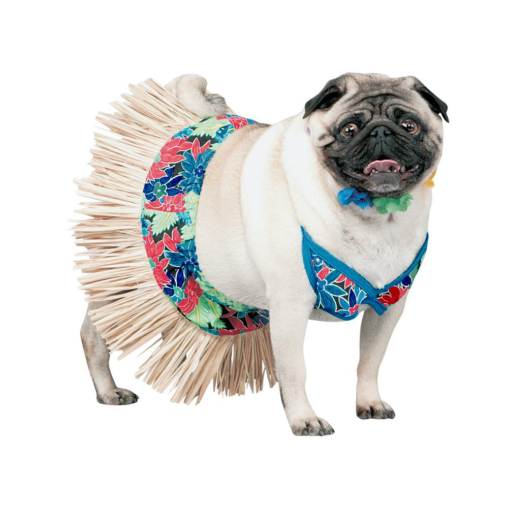 Dresses For Pugs photo - 1