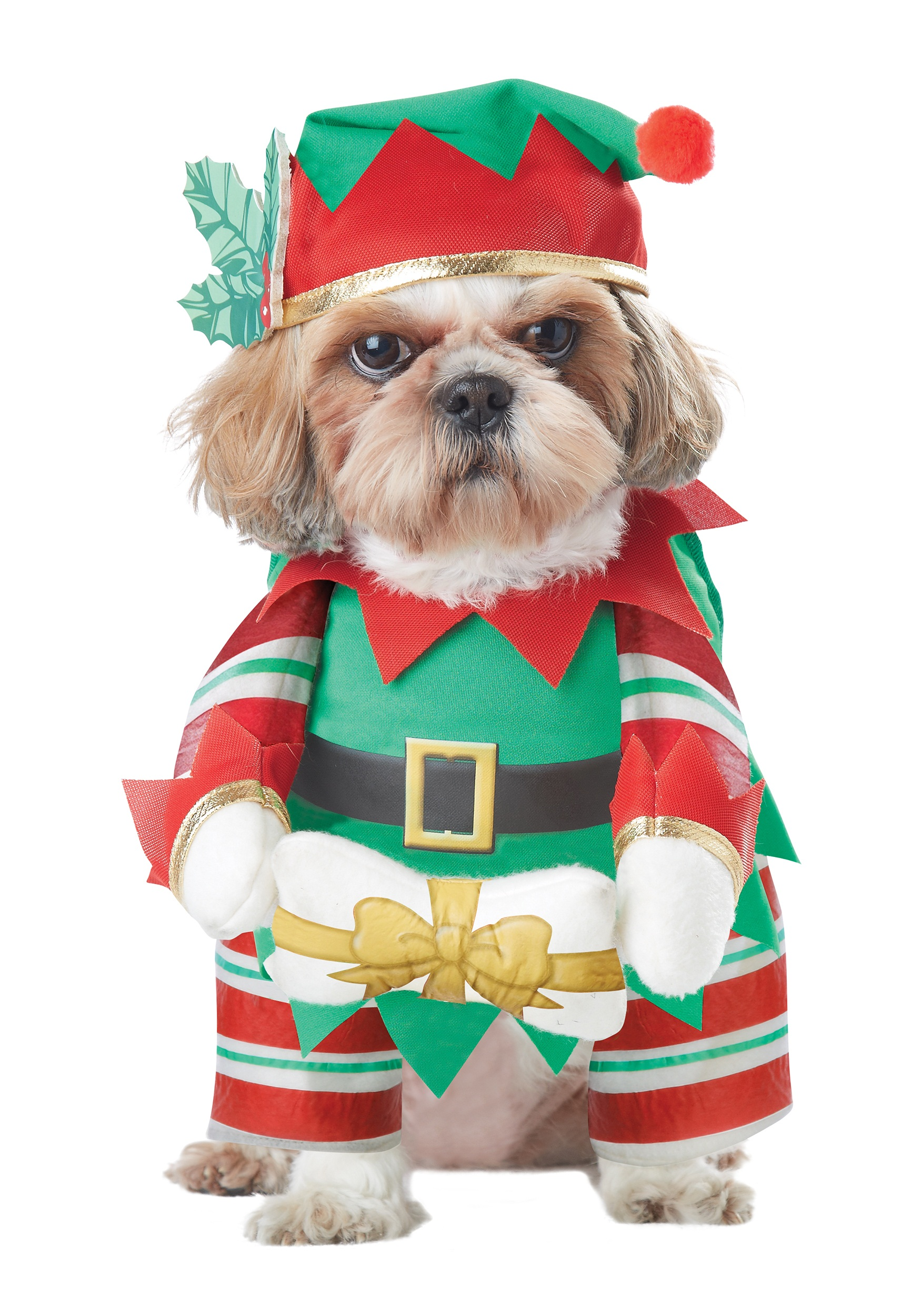 Elf Costume For Dog photo - 1