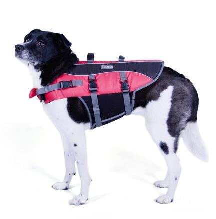 Extra Large Dog Jackets photo - 1