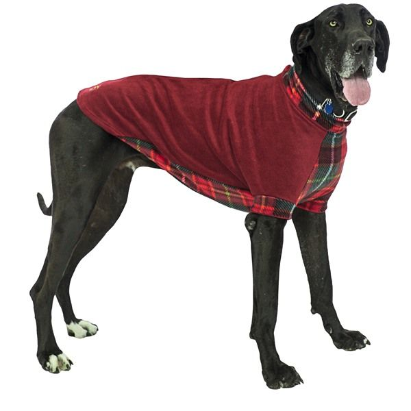Extra Large Dog Sweater photo - 3