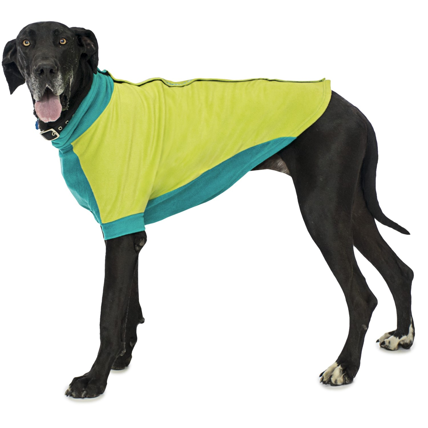 Extra Large Dog Sweaters Dress The Dog Clothes For Your Pets