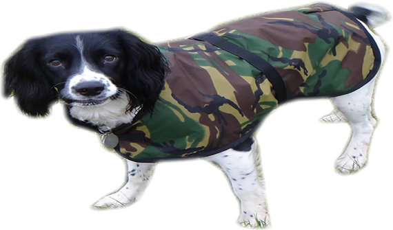 Extra Small Dog Coats photo - 2