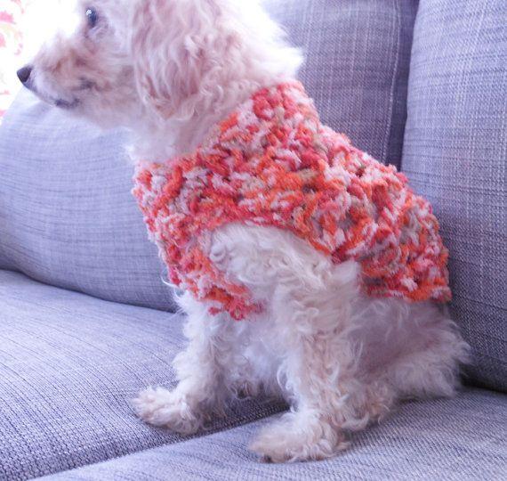 Extra Small Dog Sweater photo - 3