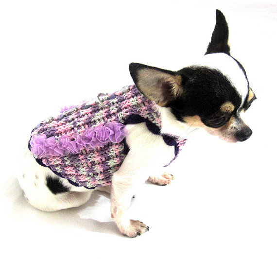 Fancy Dog Sweaters photo - 2