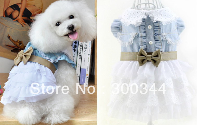 Female Dog Clothes photo - 1