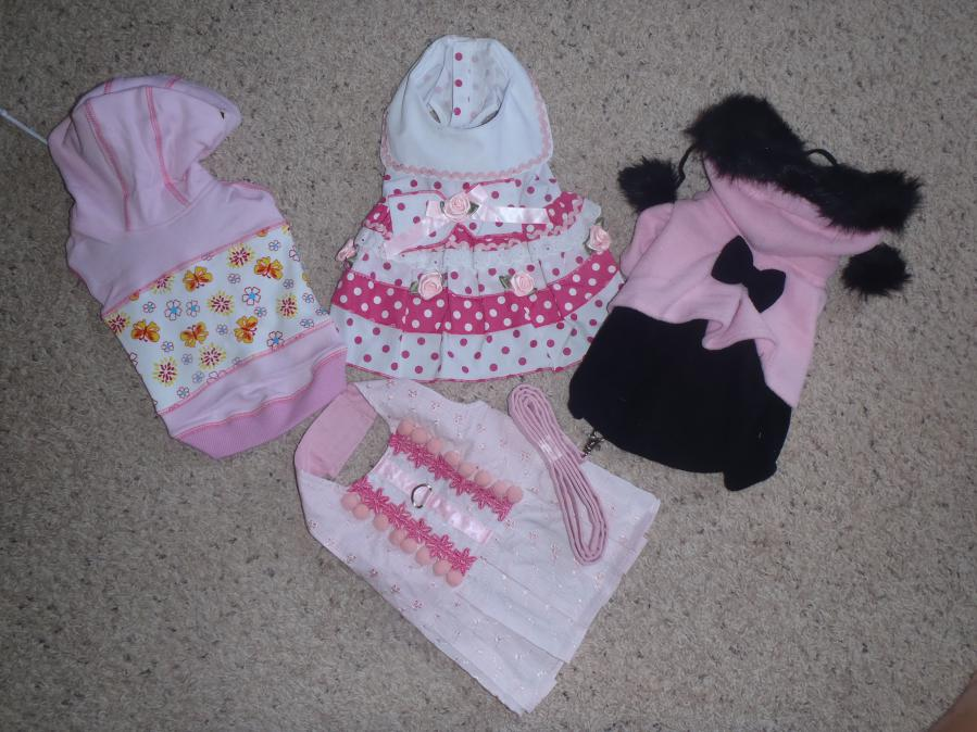 Female Dog Clothes photo - 3