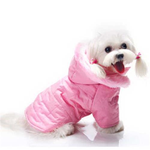 Female Dog Coats photo - 1